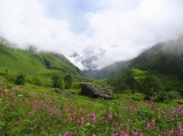 "TravelPass.gr - Η μαγευτική ""Κοιλάδα των Λουλουδιών"" στα Ιμαλάια"