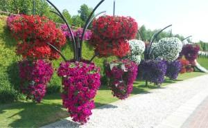 Κήπος-θαύμα στην καρδιά της αραβικής ερήμου!