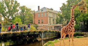 Ζωολογικός κήπος Άρτις: Φυσικός πλούτος στην καρδιά του Άμστερνταμ