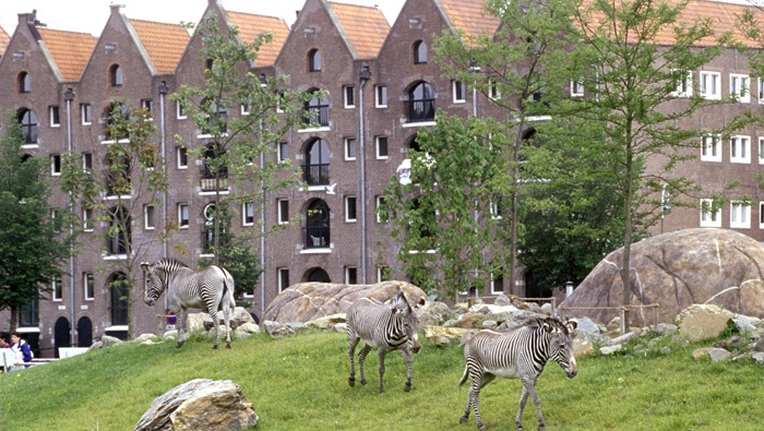 Travelpass.gr - Ζωολογικός κήπος Άρτις: Φυσικός πλούτος στην καρδιά του Άμστερνταμ