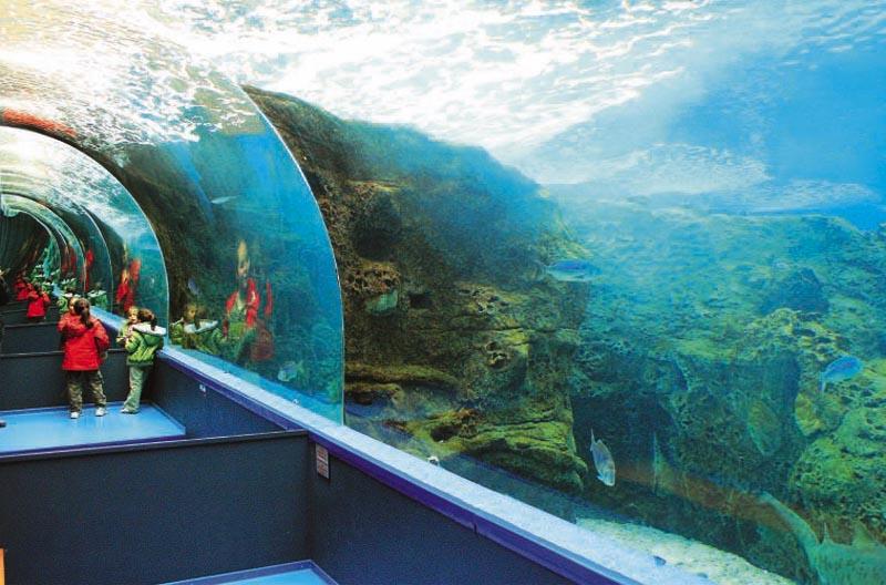 Travelpass.gr - Θαλασσόκοσμος: Το μεγαλύτερο θαλάσσιο πάρκο της Ελλάδας